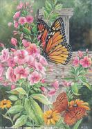 Floral and Butterfly by Martin Ryan