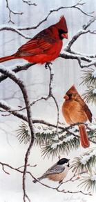 Cardinals and Chickadee on snowy branches