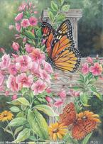 Monarch Butterfly and Floral by Martin Ryan