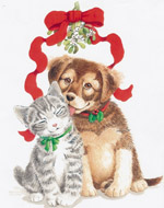 Christmas cat and dog by Parker Fulton