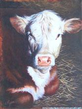 Cute Cow by Lorraine Ryan