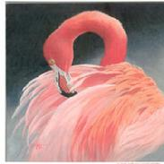 Flamingo by Kathy Goff