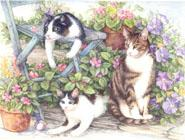 Garden Cats by Lorraine Ryan