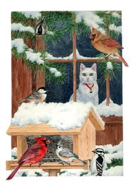 Cardinal, nuthatch, chickadee, birds, bird feeder, snow, cat