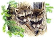 two baby raccoons peeking out of tree trunk