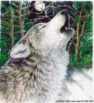 howling wolf, trees
