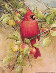 Cardinal, apples, leaves