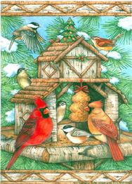 cardinals, chickadees, adirondack bird feeder, evergreen tree