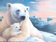 Polar Bears by Lorraine Ryan