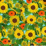 Sunflowers by Nina Herold