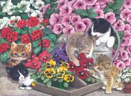 Kittens, flowers, pansies, watering can