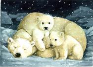 Snowing on polar bear and cubs at night