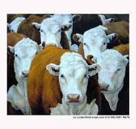 beautiful cow paintings by Linda Elliott