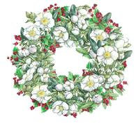 Wreath, Christmas Rose, berries, greenery